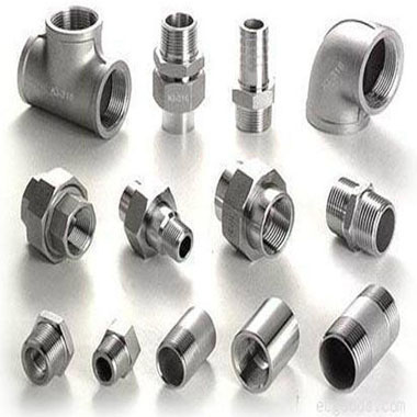 309 Stainless Steel Forged Fittings
